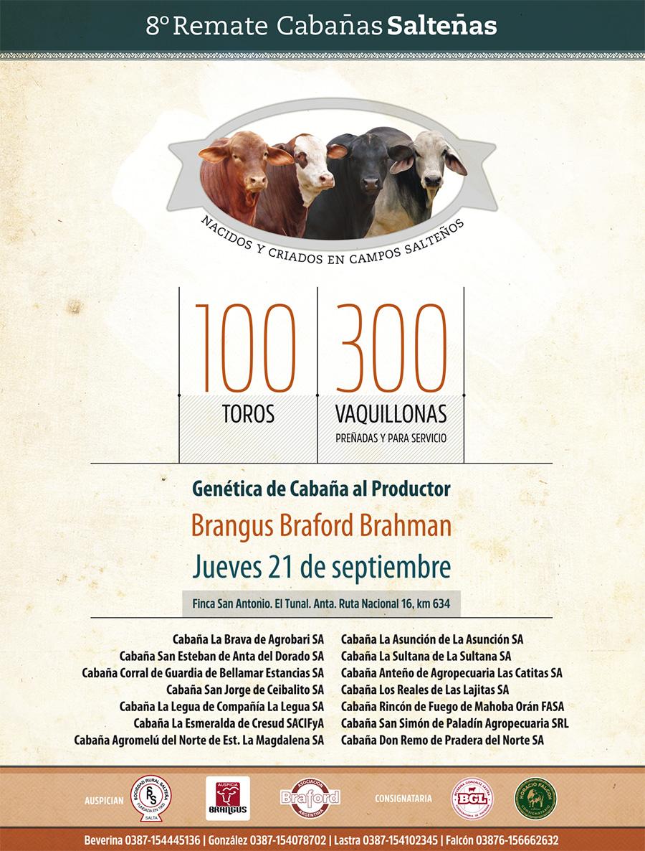 Cabañas Salteñas Revista Braford 230x300mm.cdr