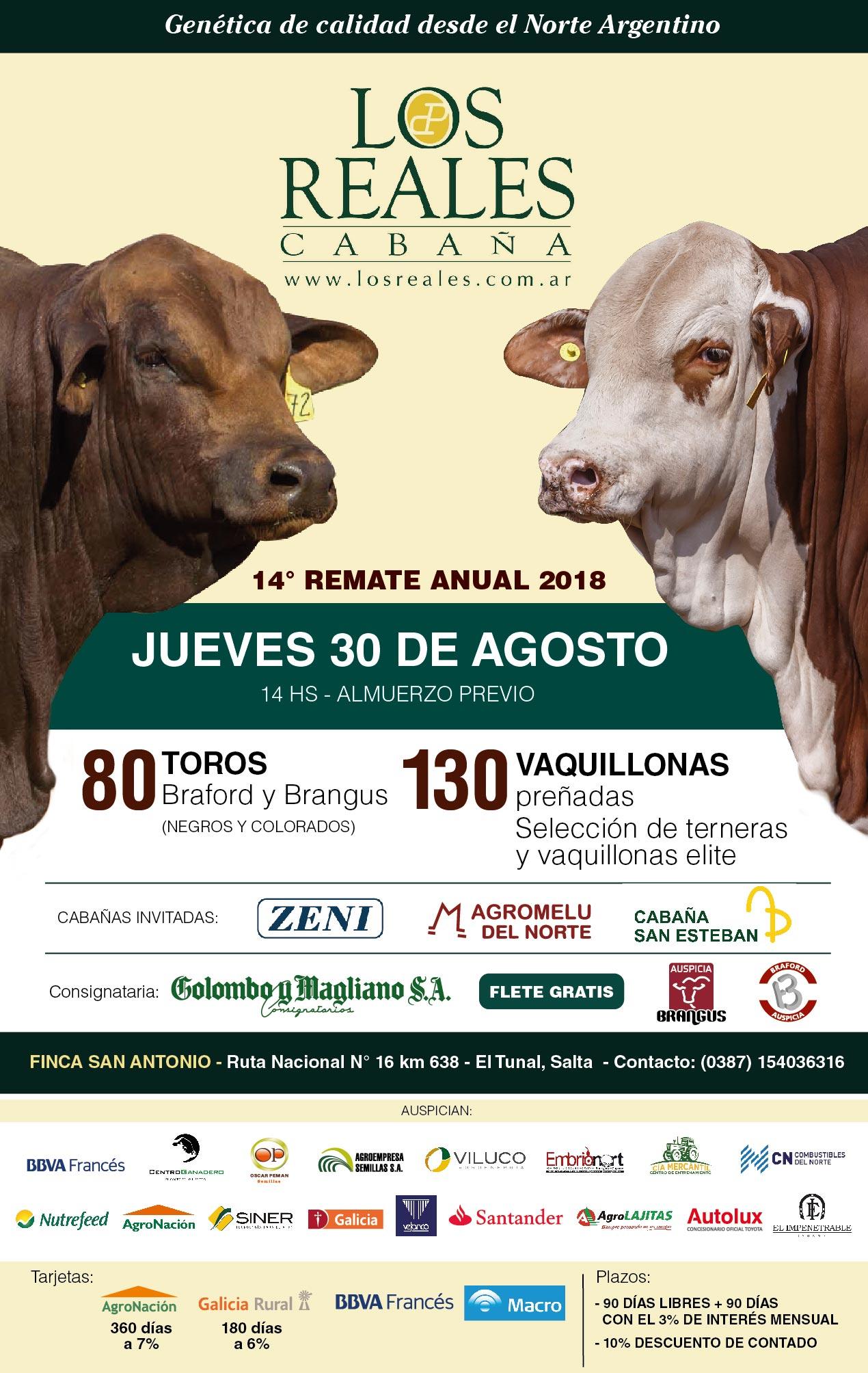 14° Rte Anual Cabaña Los Reales (flyer)