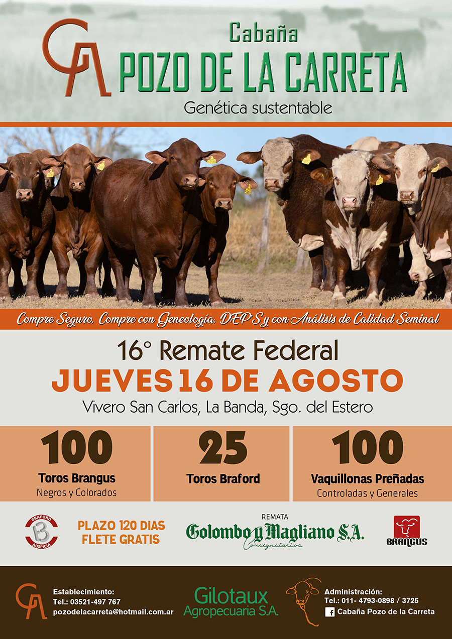 flyer rem Federal pozo 2018
