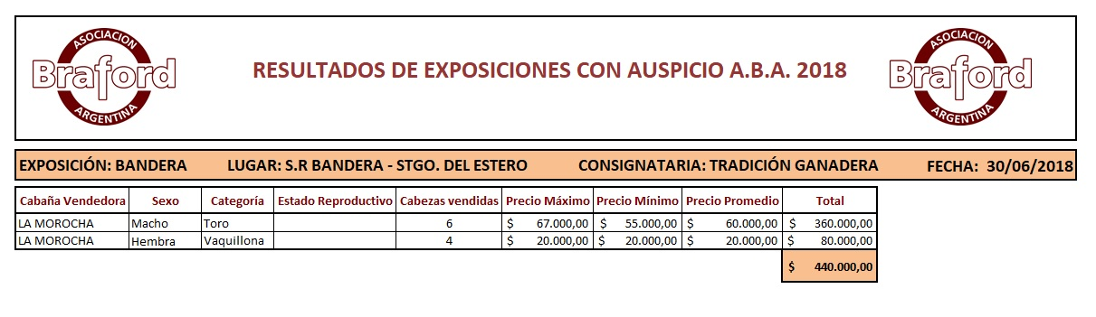 EXPO BANDERA 30.06