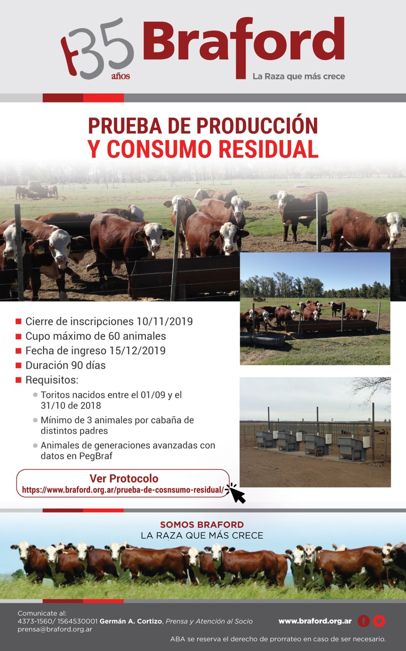 Consumo-Residual2 (2)