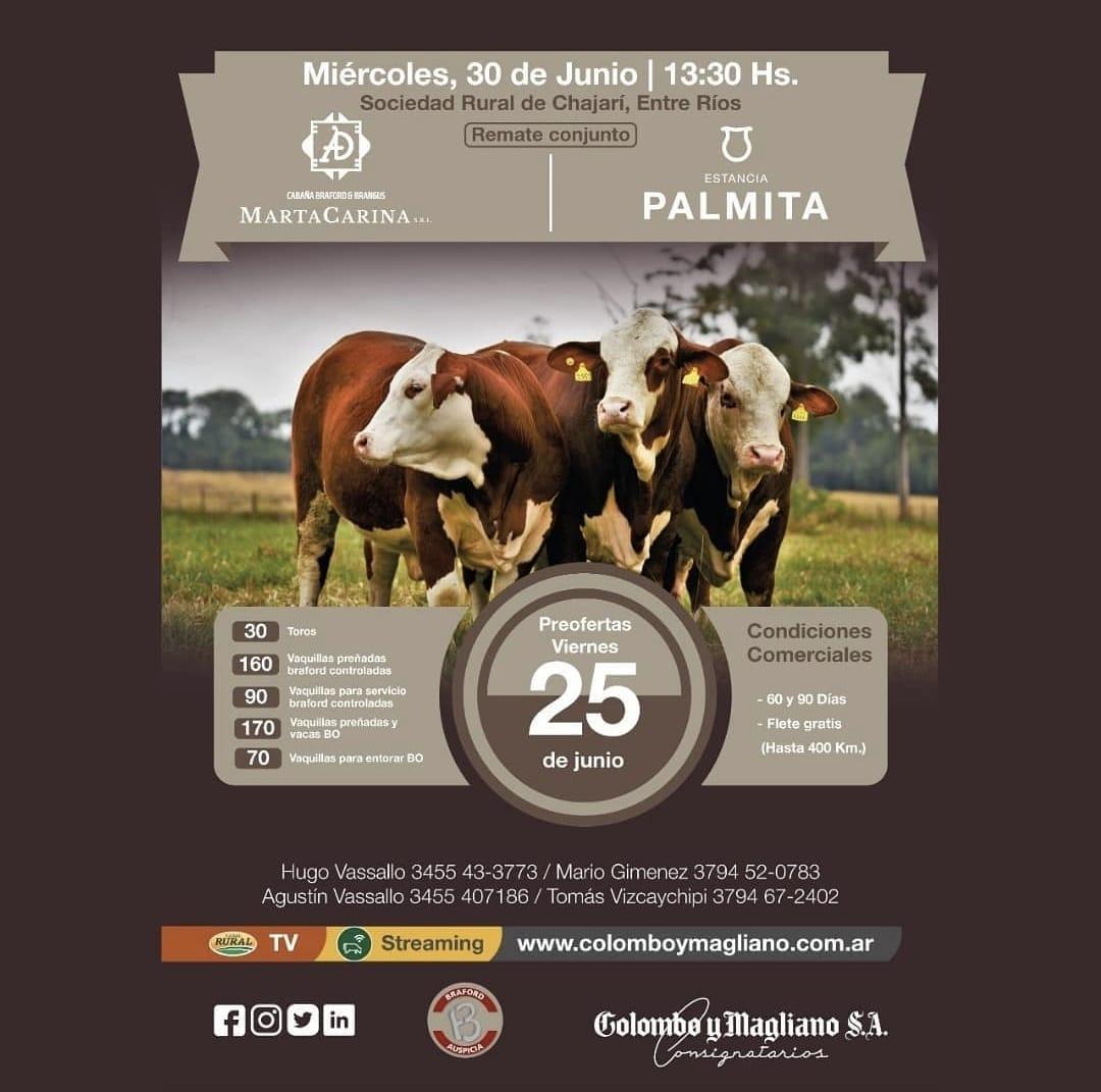 2021.06.30-Marta-Carina-Palmita