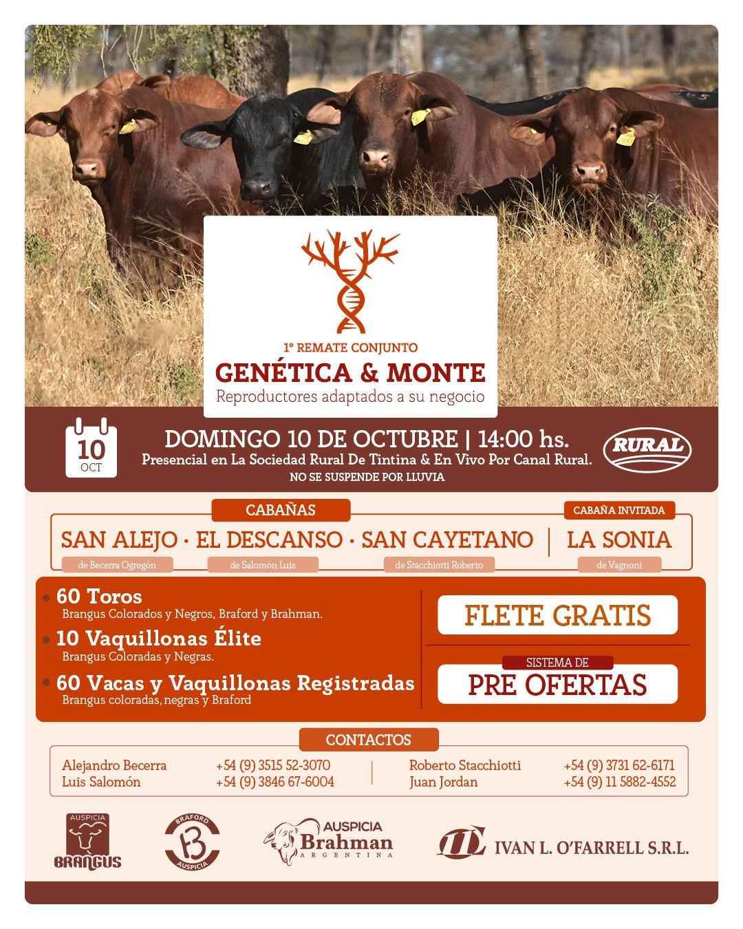11.10-Remate-Genetica-y-Monte