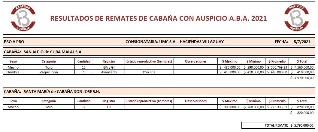 Remate Pro a Pro - Cabaña San Alejo y Santa María 5.7